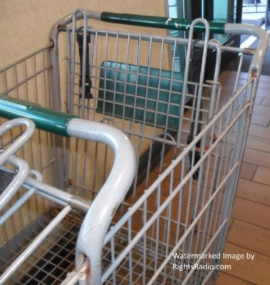 Rusty Shopping Cart: Food, Children, Health